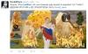 Сжечь и раздавить: как Россия противостоит европейским товарам